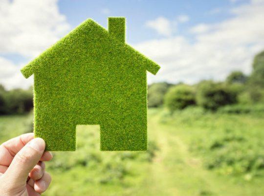 Domek z trawy